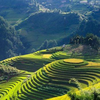 Vietnam Scenery - Vietnam Revealed